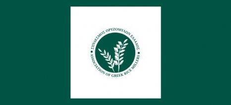 Το 1ο Πανελλήνιο Συνέδριο Ρυζιού στη Θεσσαλονίκη στις 25 Ιανουαρίου