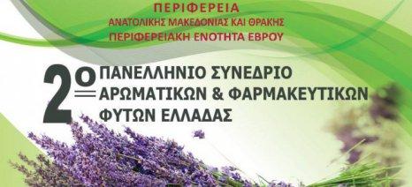 Στις 30 Σεπτεμβρίου και 1 Οκτωβρίου στην Αλεξανδρούπολη το 2ο Πανελλήνιο Συνέδριο Αρωματικών – Φαρμακευτικών Φυτών