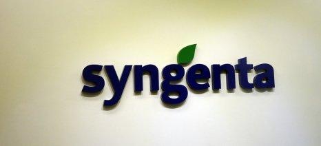 Λάθος θεωρεί την απόφαση της Ε.Ε. για τα νεονικοτινοειδή η Syngenta