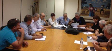 Επιτροπή από τον ΕΛΓΑ θα εξετάσει τα αίτια για τις ζημιές στις ροδακινιές