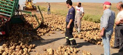 Συμφωνητικά τευτλοπαραγωγών με την Hellenic Agri Group SA ώστε να μην χαθούν συνδεδεμένες ενισχύσεις