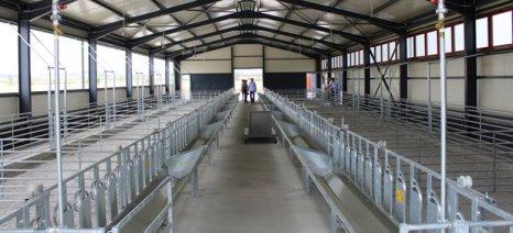 Νέο ποιμνιοστάσιο, βουστάσιο και πτηνοτροφείο προς χρήση των σπουδαστών του ΤΕΙ Θεσσαλίας