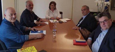 Με στελέχη της ΕΑΣ Νάξου συναντήθηκε η Τελιγιορίδου, για θέματα που αφορούν τον παραγωγικό κόσμο του νησιού