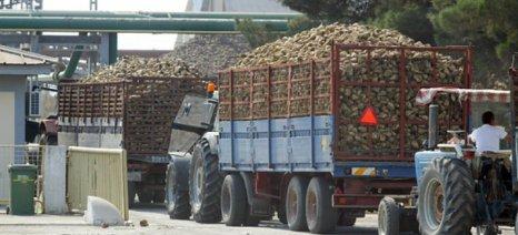 Στα σκαριά πρόγραμμα εξυγίανσης της Ελληνικής Βιομηχανίας Ζάχαρης