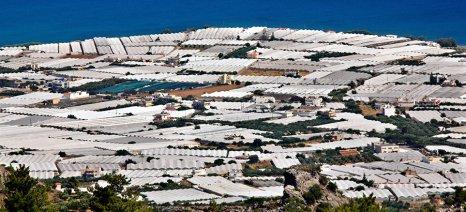 Πολυεθνική ετοιμάζεται για αγορά 200 στρ. θερμοκηπίων στην Ιεράπετρα