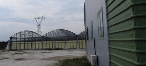 Ποιες περιφέρειες και μέχρι πότε έχουν ανοιχτή πρόσκληση για επενδύσεις μεταποίησης γεωργικών προϊόντων έως 600.000 ευρώ