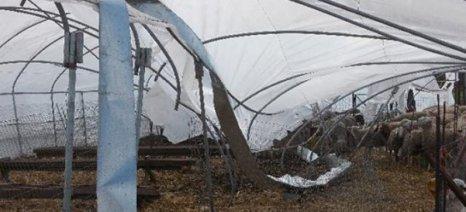 Καταστροφικοί άνεμοι ξήλωσαν πρόχειρα θερμοκήπια στη Ροδόπη