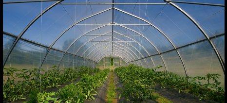 Η μεταρρυθμισμένη ΚΑΠ και η πρόκληση της παγκόσμιας επισιτιστικής ασφάλειας