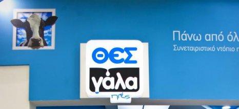 Δικαιώθηκε ο «ΘΕΣγάλα-Πιες» για το ΑΤΜ γάλακτος «μαϊμού» της Αθήνας