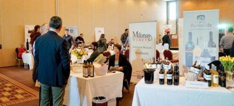 Με φιλόδοξους στόχους πραγματοποιήθηκε το 1ο Φεστιβάλ Οίνου Θεσσαλίας