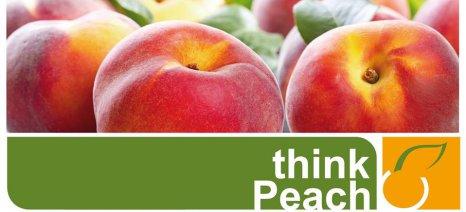 """Ολοκληρώθηκαν οι δράσεις προβολής του """"Think Peach"""" για τα ροδάκινα της Ημαθίας"""
