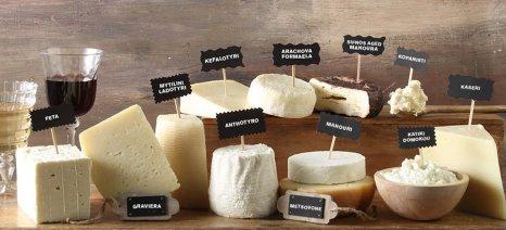 Περισσότερο τυρί με το ίδιο γάλα από τεχνολογία Ελλήνων φοιτητών