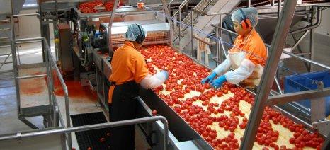 Τρία εργοστάσια επεξεργασίας ντομάτας θέλει να μεταφέρει η Κίνα στο Καζαχστάν