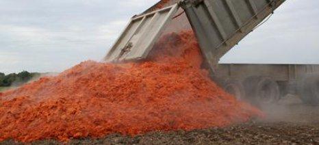 Μπαταρίες από... χαλασμένες ντομάτες θα παράγουν επιστήμονες στις ΗΠΑ