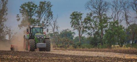 Δασικοί χάρτες: Βόμβα για χιλιάδες ιδιοκτήτες οι δασωμένοι αγροί