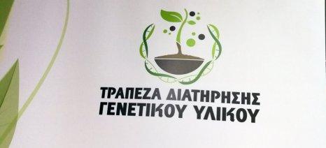 Η ανάδειξη της βιοποικιλότητας και του γενετικού υλικού είναι το στοιχείο που διαφοροποιεί τα ελληνικά προϊόντα