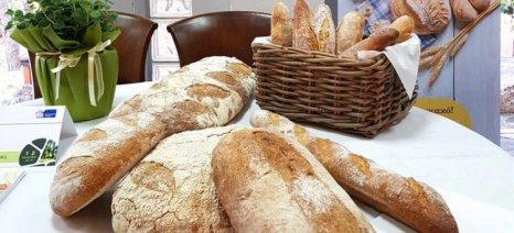 Οι Μύλοι Κρήτης παρουσίασαν ένα νέο πρωτοποριακό αλεύρι για ψωμί από tritordeum