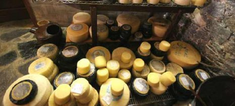 Αυξήθηκε η εγχώρια κατανάλωση τυροκομικών προϊόντων