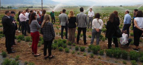 """4ο Sustainable Talks: """"Ανάπτυξη μέσω της Συνεργασίας"""""""