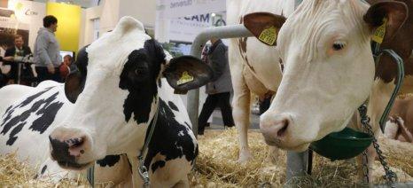 Πρόσθετη ενίσχυση 1.000 ευρώ σε 23.000 κτηνοτρόφους θα δώσει η γαλλική κυβέρνηση