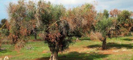 «Καμπανάκι» από Commission για 20 εισαγόμενες απειλές των καλλιεργειών της Ε.Ε.