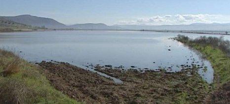 Σε λίμνη έχει μετατραπεί και πάλι ο κάμπος του Βαρικού στη Βοιωτία