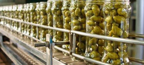 Ενημέρωση του ΕΦΕΤ για τα διατροφικά χαρακτηριστικά της επιτραπέζιας ελιάς