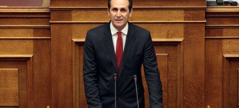 Βεσυρόπουλος: Να μην ισχύσουν τον πρώτο χρόνο εφαρμογής της νέας ΚΑΠ οι «πράσινες ενισχύσεις»