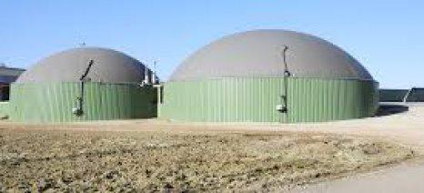 Αξιοποίηση βιομάζας κτηνοτροφικών εκμεταλλεύσεων για παραγωγή ενέργειας προτείνει το ΚΑΠΕ