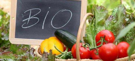 Ανοίγει ο δρόμος για πληρωμές βιολογικής γεωργίας – κτηνοτροφίας