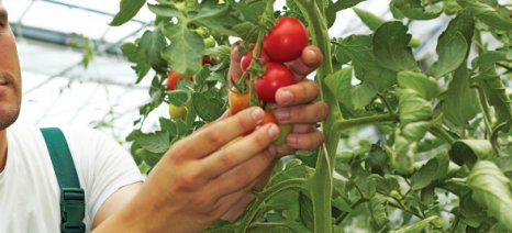 Πληρωμές βιολογικής γεωργίας 2014 σε Μαγνησία και Σποράδες