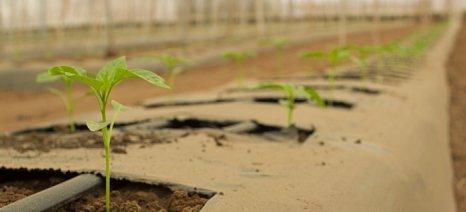 Αναρτήθηκαν οι ονομαστικές καταστάσεις για βιολογική γεωργία σε Λέσβο και Λήμνο