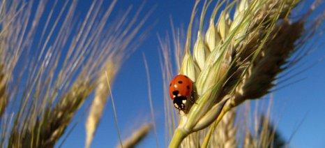 Άμεση λύση στην προβληματική ενεργοποίηση του μέτρου για τη βιολογική γεωργία ζητούν οι οργανισμοί πιστοποίησης