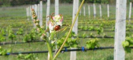 Προσωρινή ανάρτηση δικαιούχων Βιολογικής Γεωργίας (5ετία) για Λέσβο και Λήμνο
