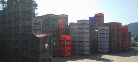 Ξεκίνησε χθες η συγκομιδή βιομηχανικής ντομάτας στη Θεσσαλία - πίνακας παραδόσεων από τον ΘΕΣΤΟ