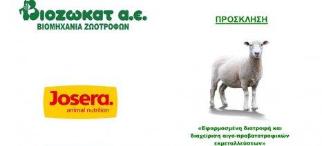 «Εφαρμοσμένη διατροφή και διαχείριση αιγο-προβατοτροφικών εκμεταλλεύσεων» στην Ηλεία από τη Βιοζωκάτ