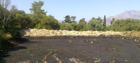 Έτοιμη για υπογραφή η ΚΥΑ για τη λίπανση ελαιώνων με απόβλητα ελαιουργείων