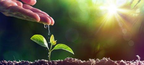 Η Bayer επιβεβαιώνει την προσφορά της στην προστασία του κλίματος και τη βιώσιμη διαχείριση των υδάτινων πόρων