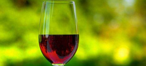 Η Ισπανία ο μεγαλύτερος εξαγωγέας κρασιού για το 2014