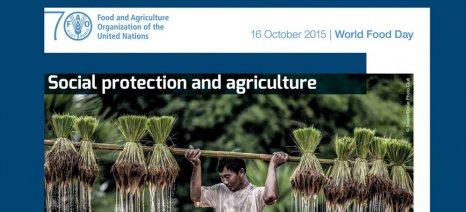 Παγκόσμια Ημέρα Διατροφής η 16η Οκτωβρίου με θέμα την Κοινωνική Προστασία και Γεωργία