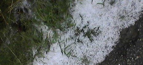 Χαλάζι και βροχή έφερε η απότομη αλλαγή καιρού στη Ροδόπη