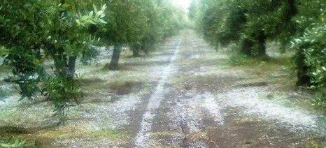 Νέα χαλαζόπτωση σε Χρυσοβέργι και «Μαγούλες» στην Αιτωλοακαρνανία