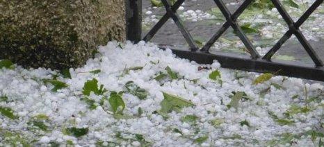 Χαλάζι έπληξε τις καλλιέργειες στο νομό Κορινθίας