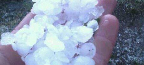 Μέχρι 20 Ιουνίου οι δηλώσεις ζημιάς για το χαλάζι της 5ης Ιουνίου σε περιοχές του δήμου Νάουσας