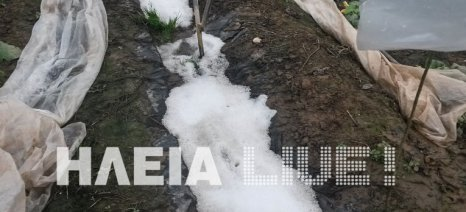 """Ισχυρή χαλαζόπτωση χτύπησε την """"καρδιά"""" των καλλιεργειών στη Γαστούνη"""