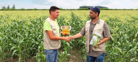 Συνεργασία Syngenta και Χαλβατζής Μακεδονική για την βελτιστοποίηση της παραγωγής κηπευτικών