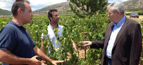 Χαρακόπουλος: Μύθος οι αφορολόγητοι αγρότες