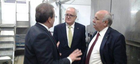 Τη Venus Growers επισκέφθηκε ο πρόεδρος της Τράπεζας Πειραιώς, Γιώργος Χατζηνικολάου