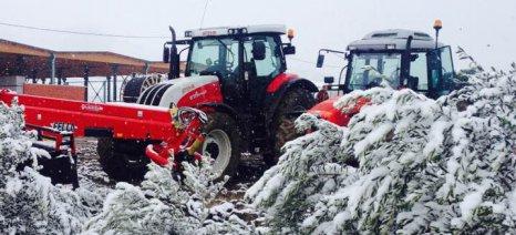 Οι αποζημιώσεις από τον παγετό κινδυνεύουν να γίνουν επίκεντρο των αγροτικών κινητοποιήσεων