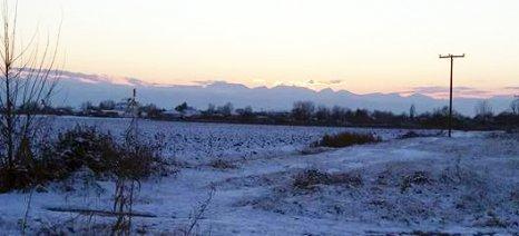 Χωρίς de minimis για την κακοκαιρία του 2016 οι κτηνοτρόφοι της Δυτικής Μακεδονίας